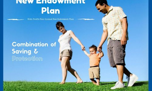 LIC's NEW ENDOWMENT PLUS – Plan No: 935
